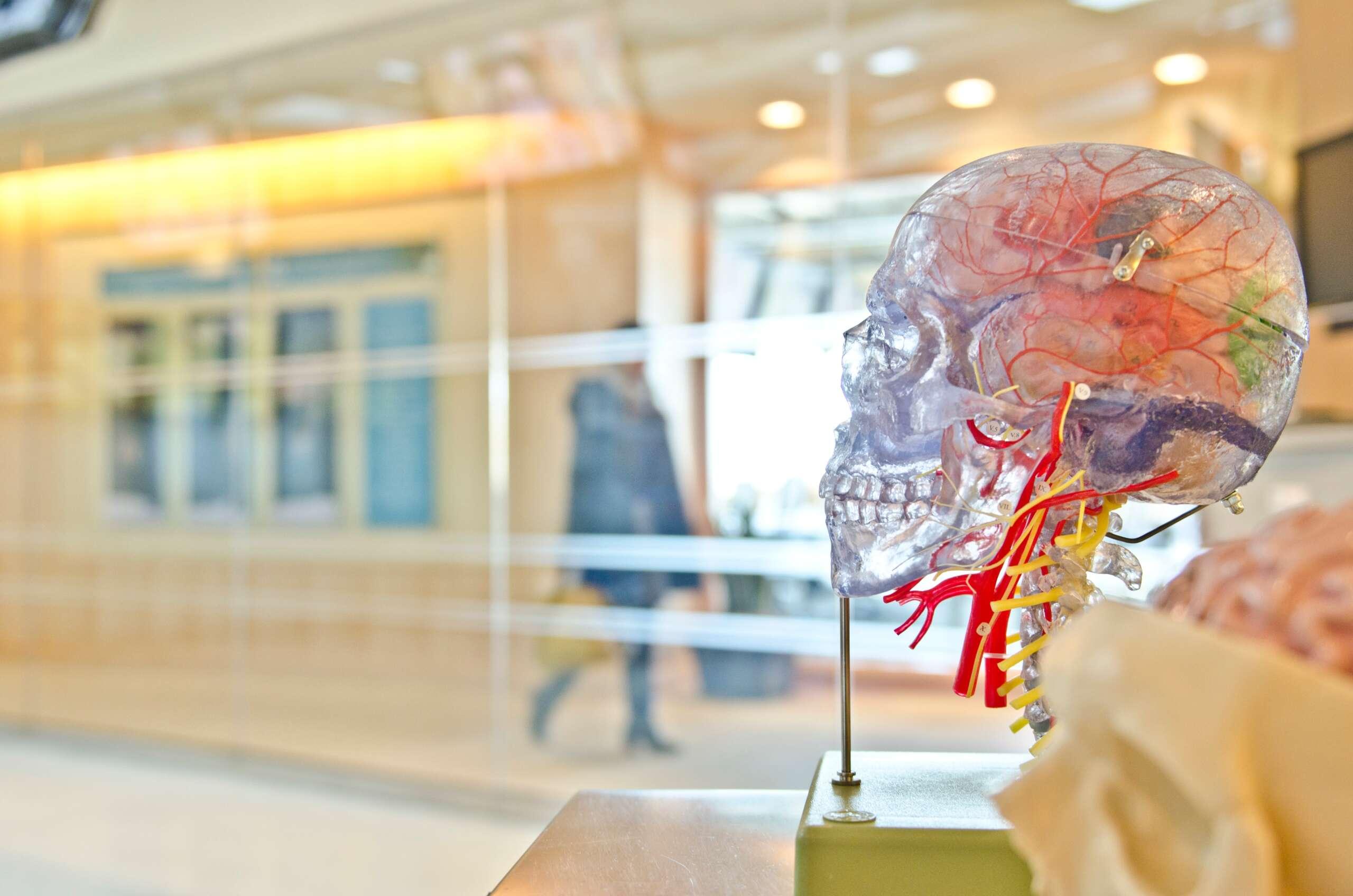 Care este diferența dintre un chirurg plastic și un chirurg estetician?